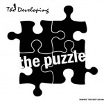 New release - The Developing - The Puzzle [TTRR011]